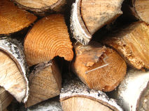 Background of dry chopped logs Royalty Free Stock Images