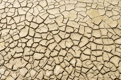 Background of dry cracked soil Royalty Free Stock Images
