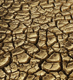 Background of dry cracked soil dirt Royalty Free Stock Photo