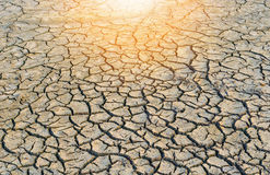 Background of dry cracked soil dirt Stock Photography