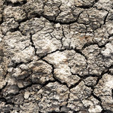 Background of dry cracked soil surface. Stock Photo
