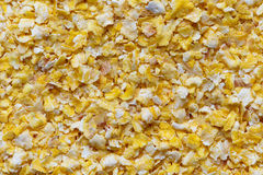 Background of dry flaked corn. Background of dry flaked corn from above Stock Image