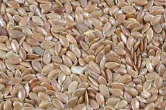 Dry flax seeds. Background from dry flax seeds Stock Image