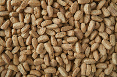 Background of dry food for cats Royalty Free Stock Photo
