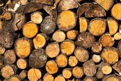 Background of dry logs stacked up on top of each other in a pile stock photos
