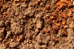 Background of dry soil in the nature Royalty Free Stock Photography