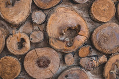 Background of dry teak logs show texture on top Royalty Free Stock Photography