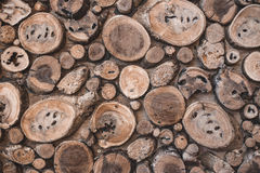 Background of dry teak logs show texture on top Royalty Free Stock Image