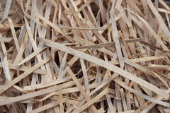 Background from dry wood shavings Royalty Free Stock Image