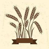 Background with ears of wheat Stock Images