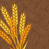 Background with ears of wheat Royalty Free Stock Photos