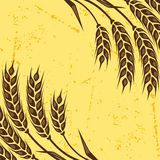Background with ears of wheat Stock Photography