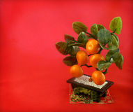 Background with East souvenir tangerine tree Stock Photos