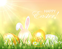 Background with Easter eggs and rabbit Stock Image