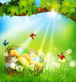 background with Easter nest and eggs on the meadow under Stock Image