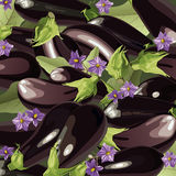 Background of aubergine Stock Photo