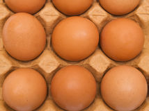 Background from eggs Stock Photo
