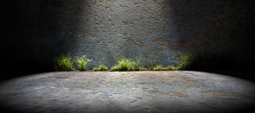 Background empty street and concrete wall Royalty Free Stock Image