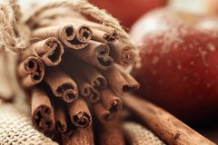 Background from ends of cinnamon sticks in macro royalty free stock image