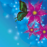 Background with exotic flowers and butterfly Stock Image
