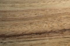 Background of exotic wood grain. Background for graphic design work. Close-up pattern texture brown plank material wooden hardwood timber detail natural tree royalty free stock photo