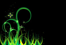 Background - a fairy grass. Green fairy grass with flowers Royalty Free Stock Image