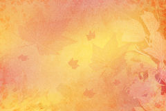 Background fall Royalty Free Stock Images