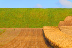 Background of the farmer field.Rural landscape. Stock Images