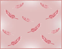 Background with feathers. Delicate texture with pink feathers in the air Royalty Free Stock Photo