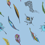 Background with feathers Stock Photography