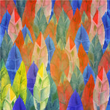 Background of feathers, leaves Tribal, boho Stock Image