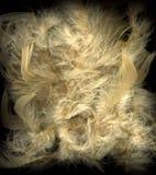 background feathers texture vintage Στοκ Φωτογραφίες
