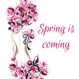 Background with female back silhouette and pink flowers spring i Royalty Free Stock Photo