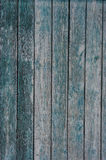 The background is a fence made of planks texture vintage Royalty Free Stock Images