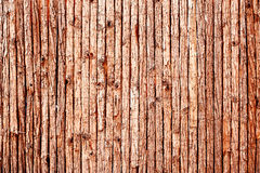 Background fence texture. Abstract background of fence made up using strips of tree bark and kept together using thin lengths of wire stock photos