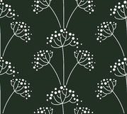 Background with fennel. Seamless pattern. Background with fennel Royalty Free Stock Images