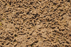 Background fertilizer Stock Images