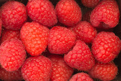 Background filled with raspberries. Background completly filled with raspberries Royalty Free Stock Photo