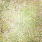 Background with fir. Fabric background with green bough royalty free illustration
