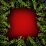 Background with fir branches. Red square background with fir branches. Vector illustration Stock Photo