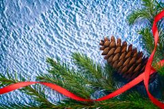 Background with fir and cone Royalty Free Stock Image