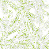 Background with fir tree Royalty Free Stock Image