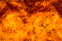 Background of the fire Stock Image