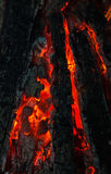 Background from a fire, conflagrant firewoods and coals Stock Photos