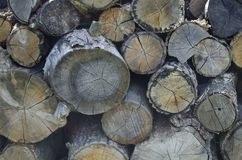 Pile of old chopped fire wood Royalty Free Stock Images