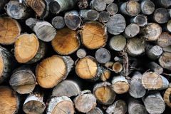 Background of firewood Royalty Free Stock Photo