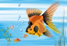 Background, fish , aquarium. Background, illustrations of fish and tropical underwater environment, computer generated Stock Photography