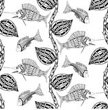 Background with fish. Seamless background of abstract fish: pipefish and small fish, plants, hand drawn style zentangl. Black and white vector illustration Royalty Free Stock Image