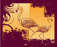 Background with flamingo Royalty Free Stock Image