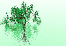 Background flooding. Abstract creative symbolic image lone tree in the water Royalty Free Stock Photo